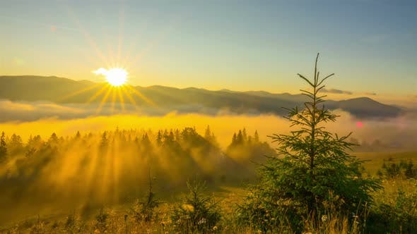 Cover Image for Misty Morning in the Mountains