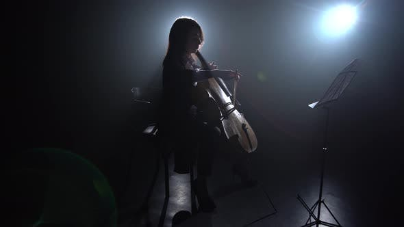 Thumbnail for Highlight From the Light in a Room Girl Plays the Cello