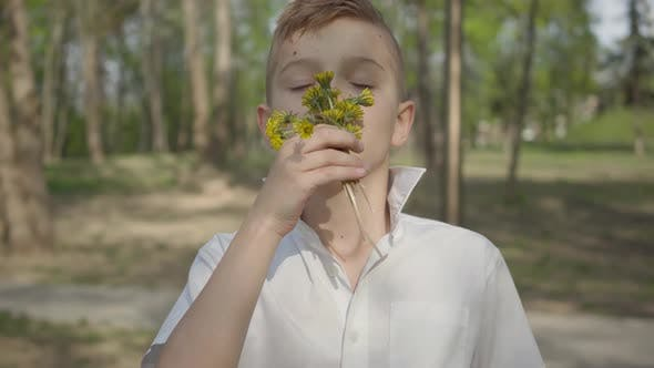 Thumbnail for Young Boy with Dandelion Flowers Waiting To Give a Bouquet for Person. Outdoor Recreation