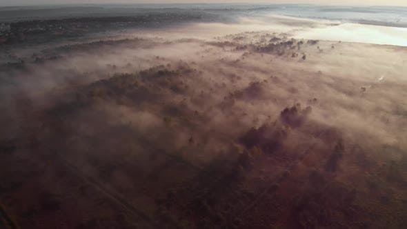 Epic aerial view of sunrise fog covering field with trees.