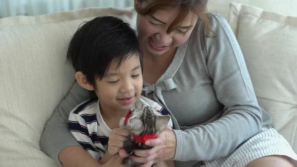 Asiatische Familie spielt zu Hause mit Kätzchen auf dem Sofa