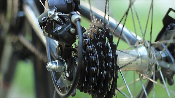 Thumbnail for Rear Bicycle Gears