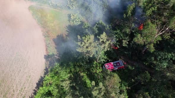 Fire Fighter with Safety Equipment and Truck Extinguishing Fire in Forest