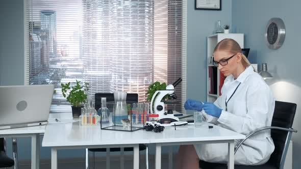 Thumbnail for In Chemistry Research Laboratory Female Professor Conducting Experiments with Organic Materials
