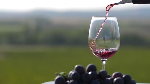 Thumbnail for Winemaker