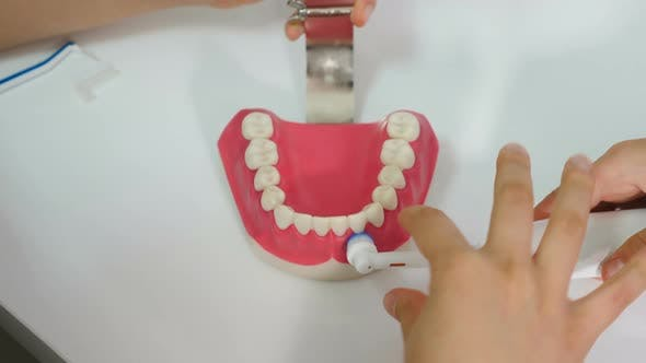 Thumbnail for Orthodontist Showing How To Clean Teeth Using Electric Toothbrush and Jaw Model. Boy Trying To Clean
