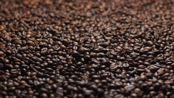 Thumbnail for Beautiful Roasted Coffee Beans