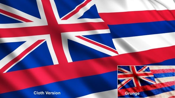 Thumbnail for Hawaii State Flags