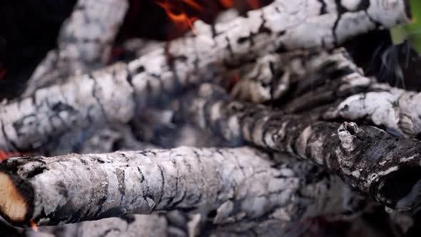 Thumbnail for Smoldered logs in slight fire