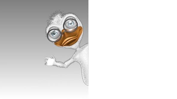 Dessin animé Duck Show Publicités en boucle sur blanc