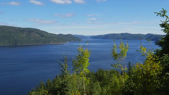 Thumbnail for High Angle In The Trees Showing Large Body Of Water And Mountains In The Background 4