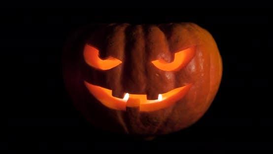 Thumbnail for Halloween Pumpkin isolated on Dark Background