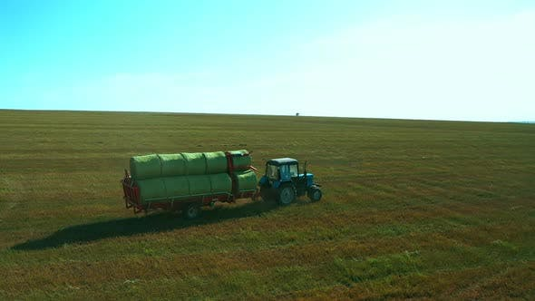 Thumbnail for Tractor Carries the Harvest of Grass for the Winter. Haystacks in a Large Field. Huge Field of Grass