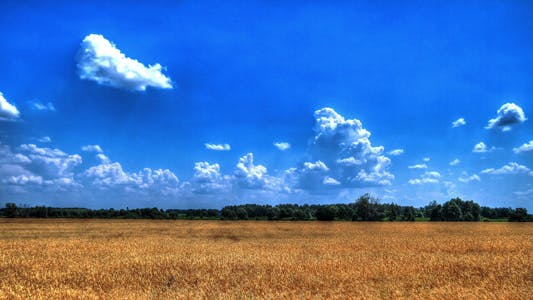 Thumbnail for White Clouds Flying On Blue Sky Over Yellow Field