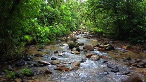 Following a stream covered in large boulders in a mountain forest