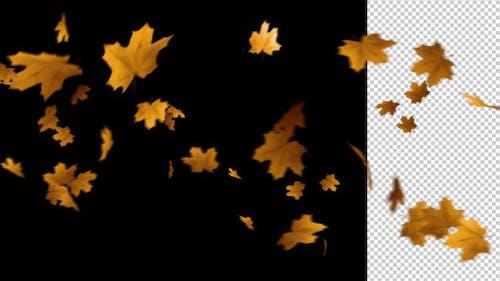 Flying Leaves 2 (60 FPS)