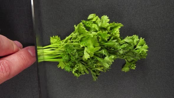 Thumbnail for Human hand cut a parsley and it flies away