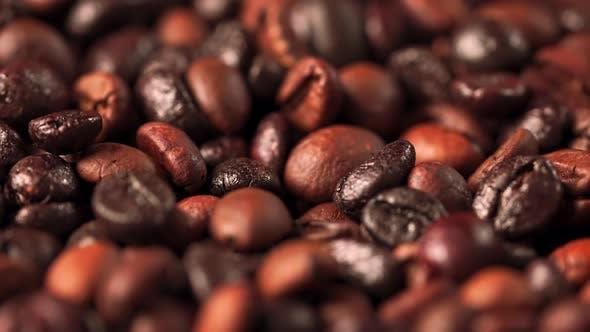 b Roll Shooting Seed Coffee