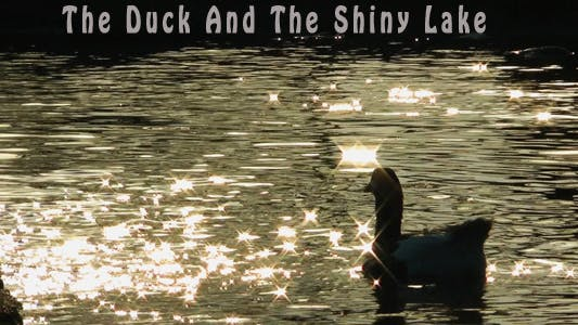 Thumbnail for Duck and the Shiny Lake