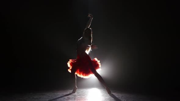 Thumbnail for Beautiful Girl Dancing Cha-cha-cha in the Studio on a Dark Background, Smoke, Silhouette