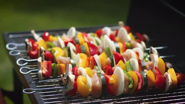 Thumbnail for Colorful and Tasty Grilled Shashliks on Outdoor Summer Barbecue