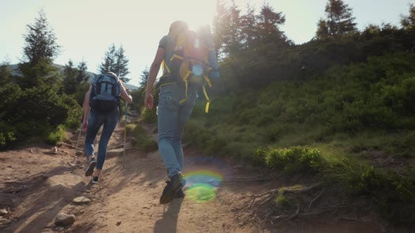 Thumbnail for A Group of Young People Climb a Mountain Friends on a Hike