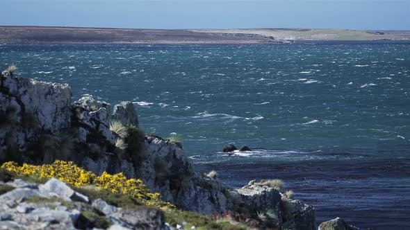 Thumbnail for Rough Sea In the Falkland Islands (Islas Malvinas).