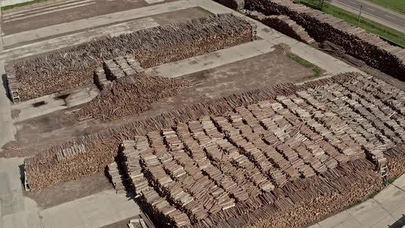 Aerial View Warehouse of Trees at a Logging Production.