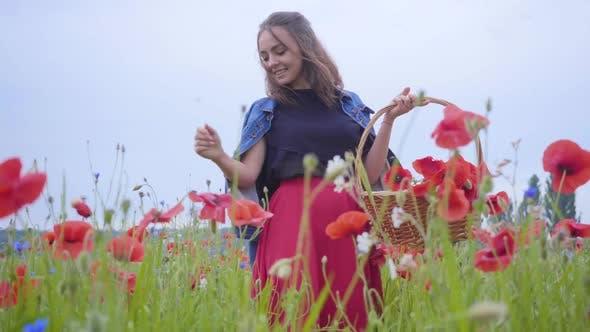 Thumbnail for Portrait of Pretty Girl Walking in Poppy Field Gathering Flowers in the Wicker Basket