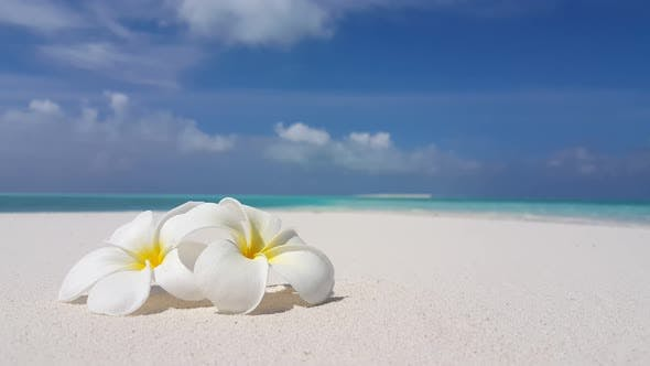 Thumbnail for Luxury overhead island view of a summer white paradise sand beach and blue ocean background in color