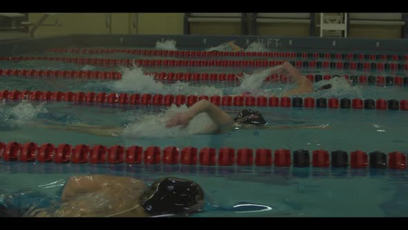 Thumbnail for Swimming 040