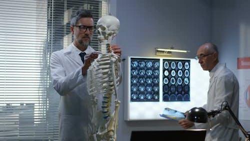 Doctors Analyzing x Ray on Skeleton