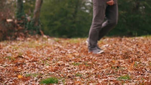 Cover Image for Autumn and Walking Human
