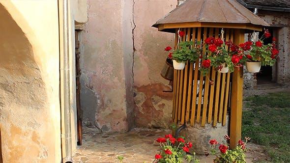 Thumbnail for Flower Pots Swinging
