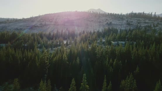 Thumbnail for Drone Flying Above Amazing Pine Forest Towards Beautiful Mountain Ridge Skyline