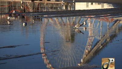Reflection Amusement Park
