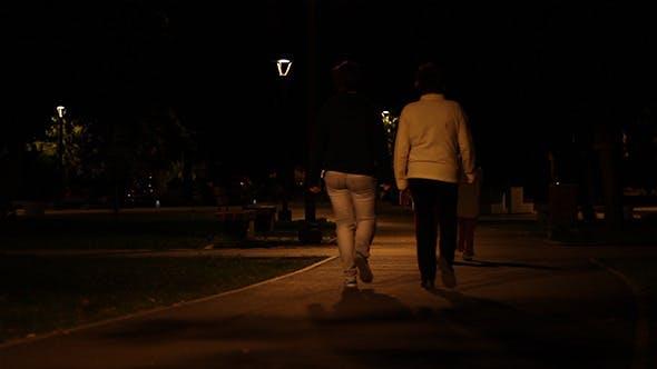 Thumbnail for Nighttime Park Promenade
