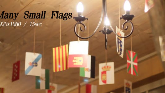 Cover Image for Many Small Flags 2