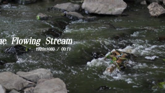 The Flowing Stream