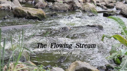 Thumbnail for The Flowing Stream 3