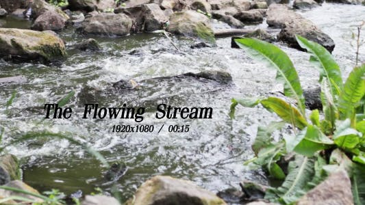 Cover Image for The Flowing Stream 4