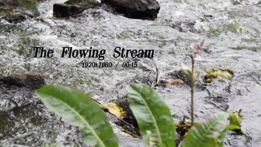 Thumbnail for The Flowing Stream 5