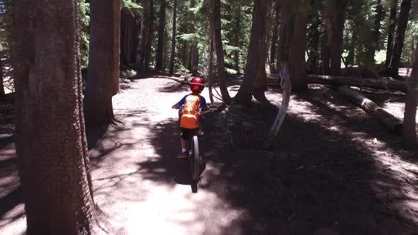 Thumbnail for A boy rides his mountain bike on a singletrack dirt trail in the woods.
