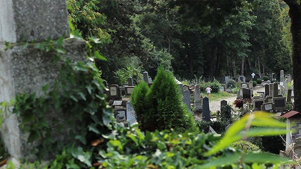 Thumbnail for Graves in Cemetery View