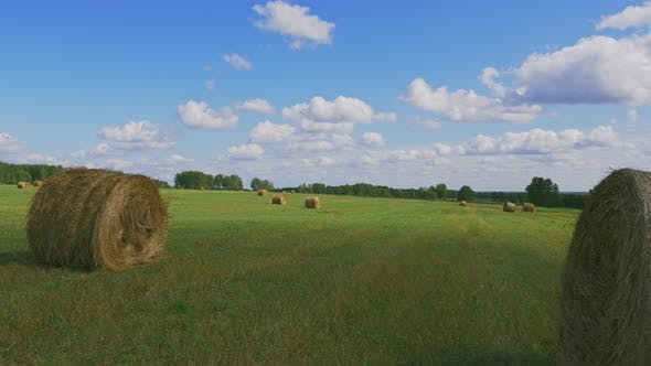 Thumbnail for Countryside Field Nature with Bales of Golden Hay