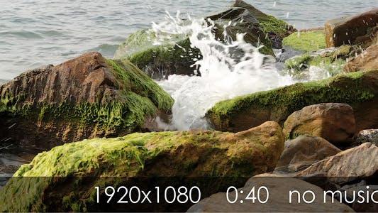 Thumbnail for Sea 2