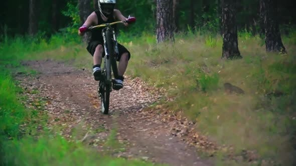 Thumbnail for Downhill Bike Wheeling