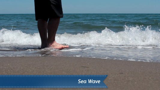 Cover Image for Wave