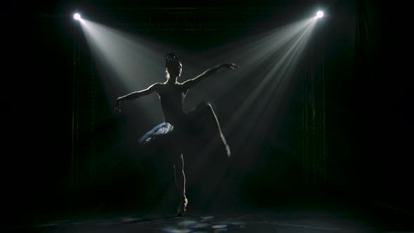 Thumbnail for Silhouette of a Graceful Ballerina in a Chic Image of a Black Swan. Classical Ballet Choreography