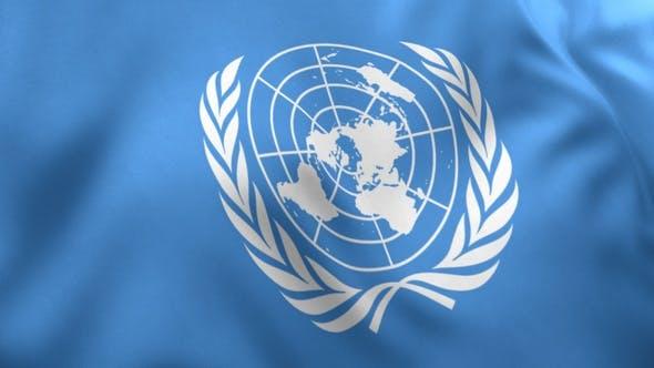 United Nations Flag / UN Flag